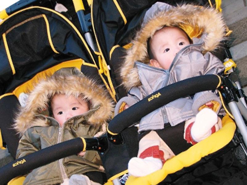 ベビーカーに乗っている双子の赤ちゃん