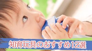 知育玩具のおすすめ~赤ちゃんから幼児に人気のおもちゃ12