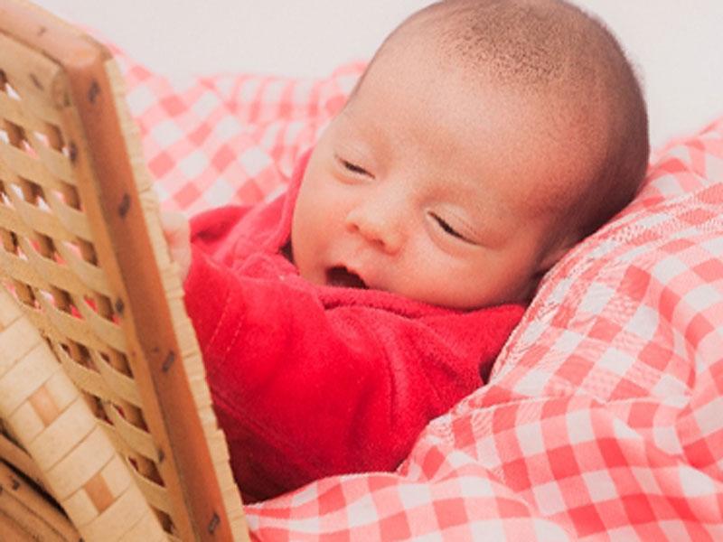 かごに入っている赤ちゃん