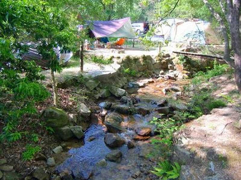 自然の森ファミリーオートキャンプ場にある川