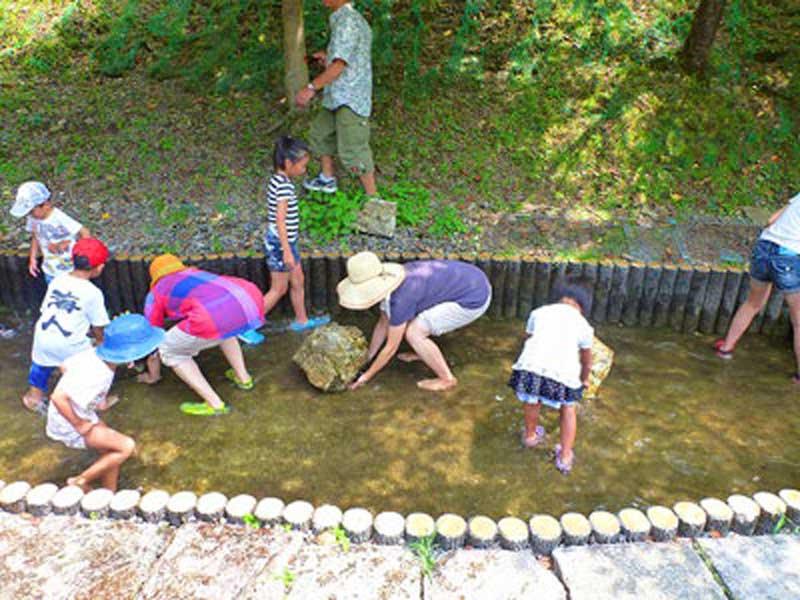 山村都市交流の森の魚のつかみ取り