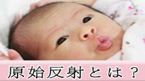 原始反射とは?新生児・赤ちゃんの反応の種類・消失時期