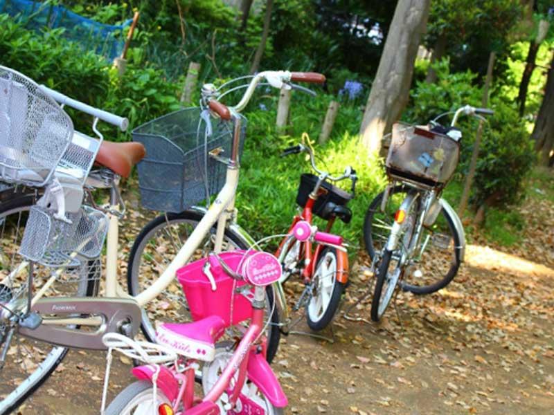 親子の自転車
