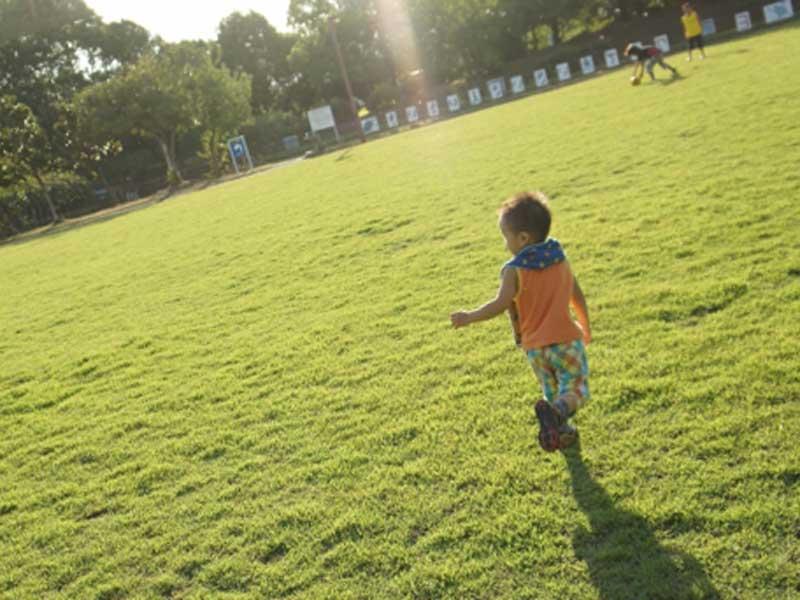 芝の上で走る子供