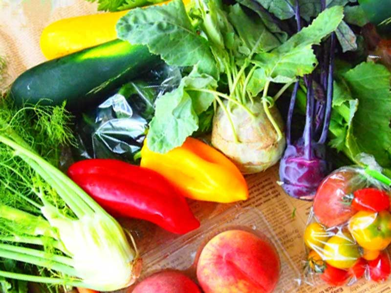 色々な新鮮な野菜