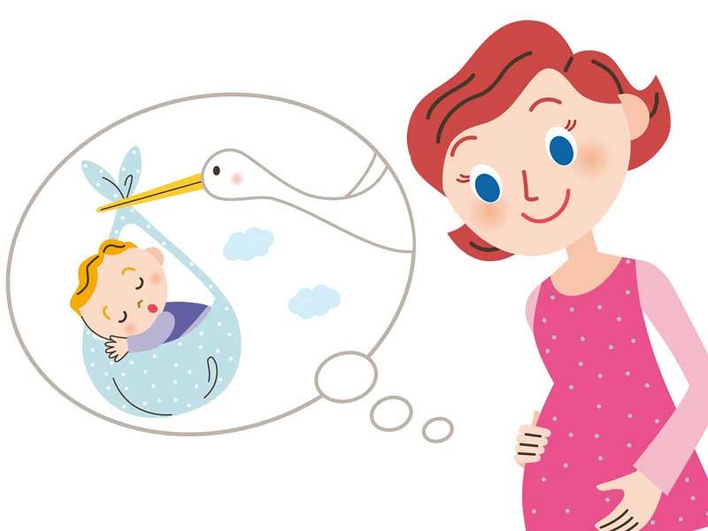 お腹の赤ちゃんを想像する妊婦のイラスト