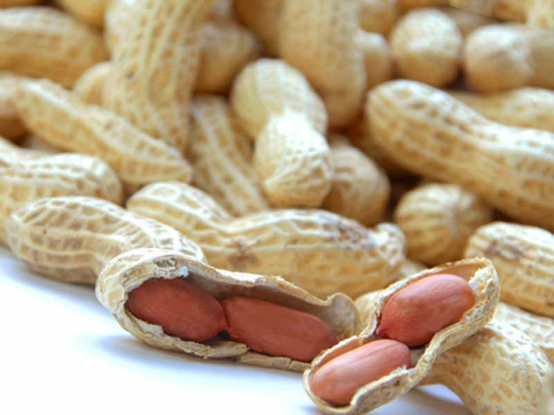 殻付きピーナッツ