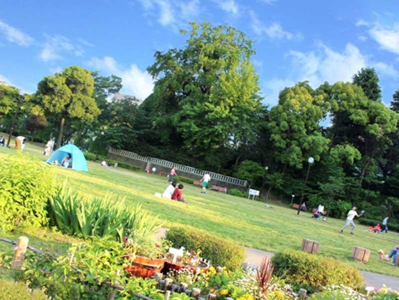 週末の公園
