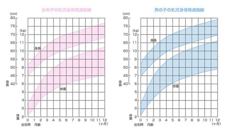 乳児身体発達曲線