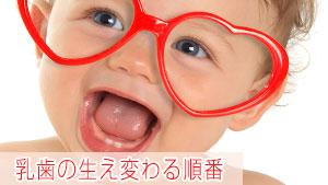 乳歯の生え変わりの順番とは?乳歯が生える時期/抜ける時期