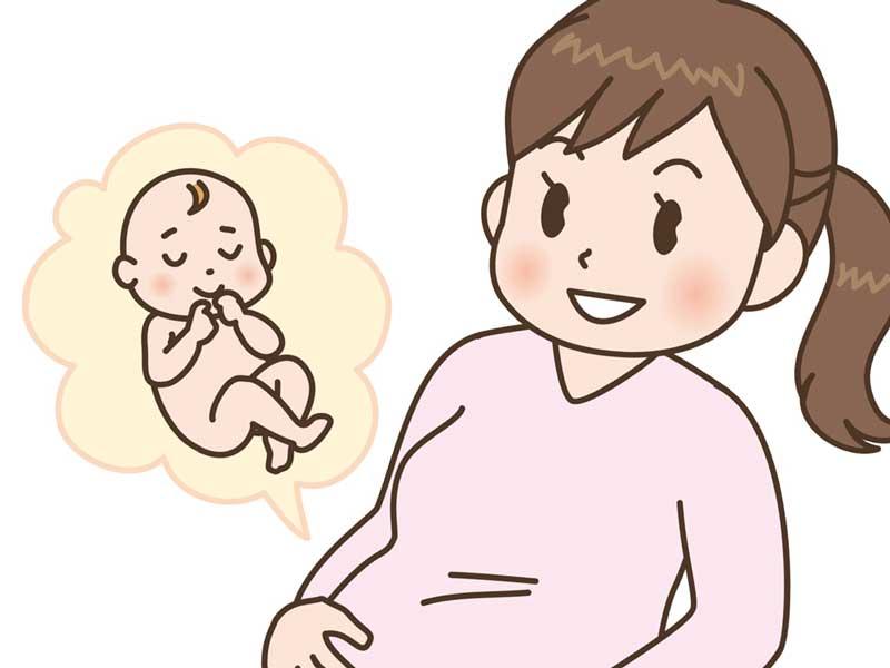 お腹の中の赤ちゃんのことを想像している妊婦さんのイラスト