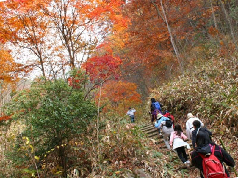 山登りする子供達と親達
