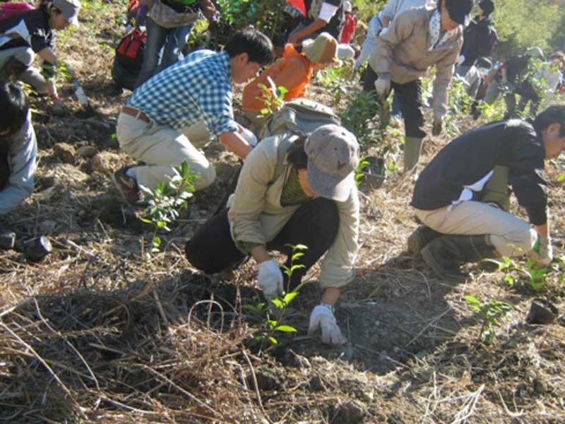 ボランティアで草刈りをしている人達