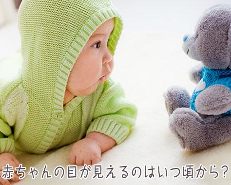 赤ちゃんの目が見えるのはいつ?視力発達におすすめの絵本5