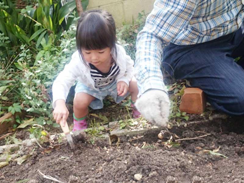 家庭菜園の土作りをする子供