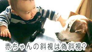 赤ちゃんの斜視の原因~メガネ/手術の治療方法の違いとは