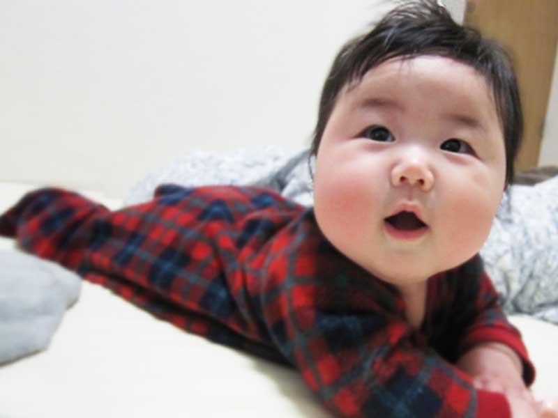 ハイハイ期の赤ちゃん
