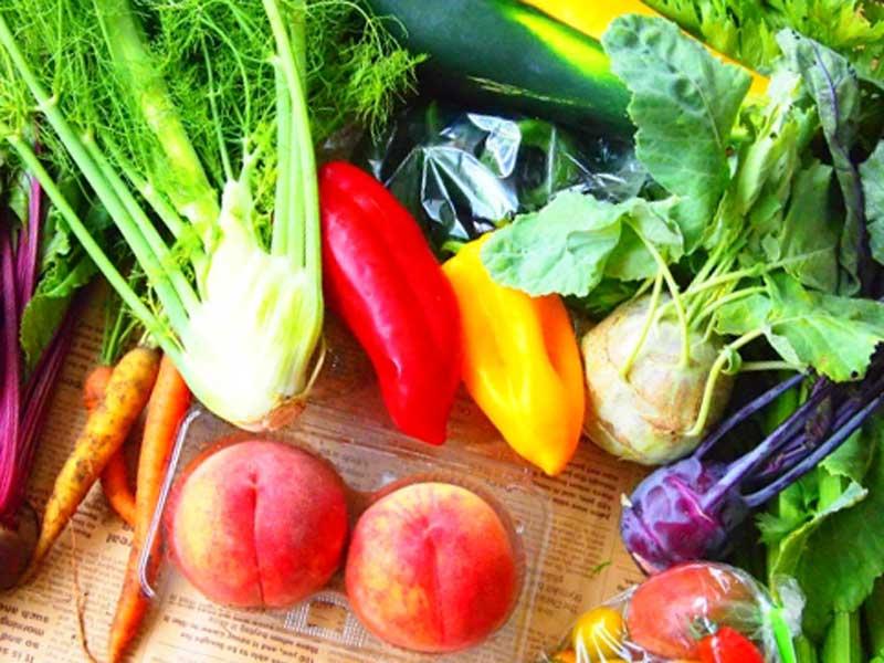 新鮮野菜各種