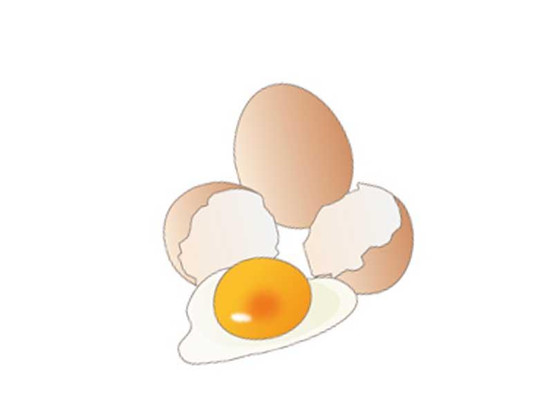 アレルギー物質が含まれる卵のイラスト