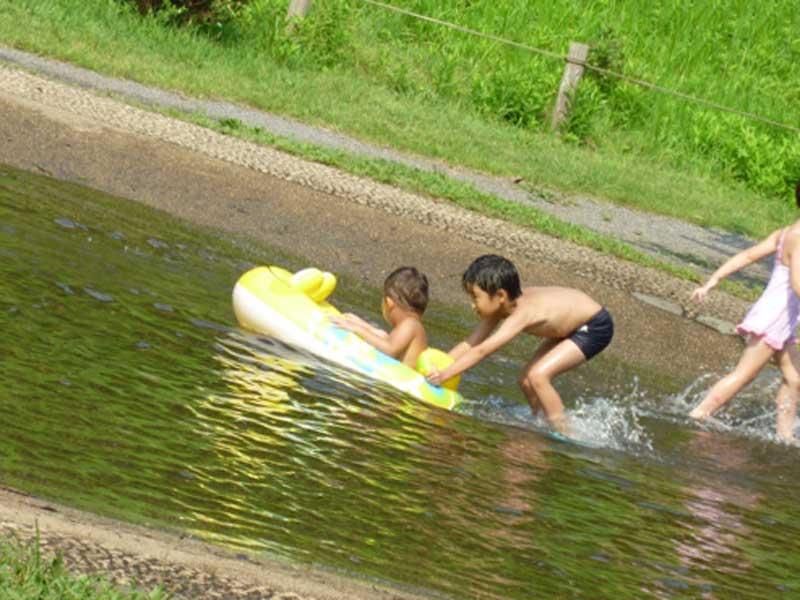 川遊びをしている子供達