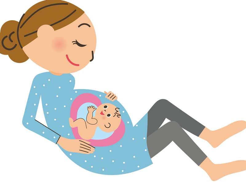 妊婦さんのお腹の中の赤ちゃんのイラスト