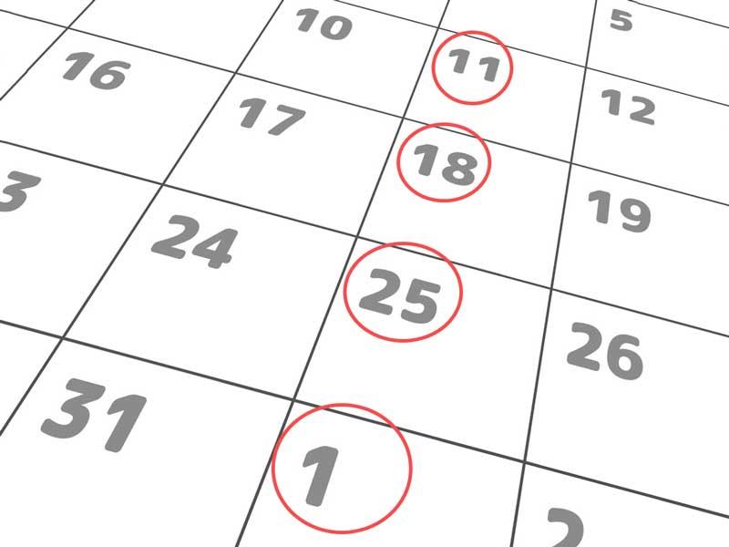 週1回健診のカレンダー