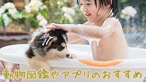 動物図鑑おすすめ15選!2~3歳から夢中になる本やアプリ