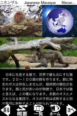 動く!動物図鑑 mini FREE(アプリ画面キャプチャ)