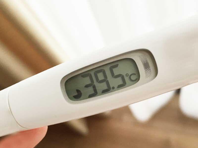 39.5度を差してる体温計