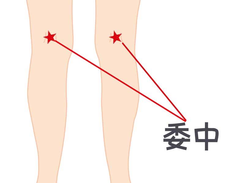 委中のつぼのイラスト