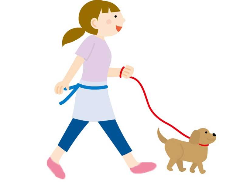 犬の散歩をしている主婦のイラスト