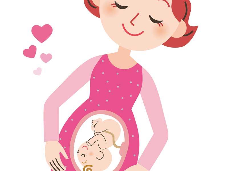 妊婦のお母さんとお腹の赤ちゃんのイラスト