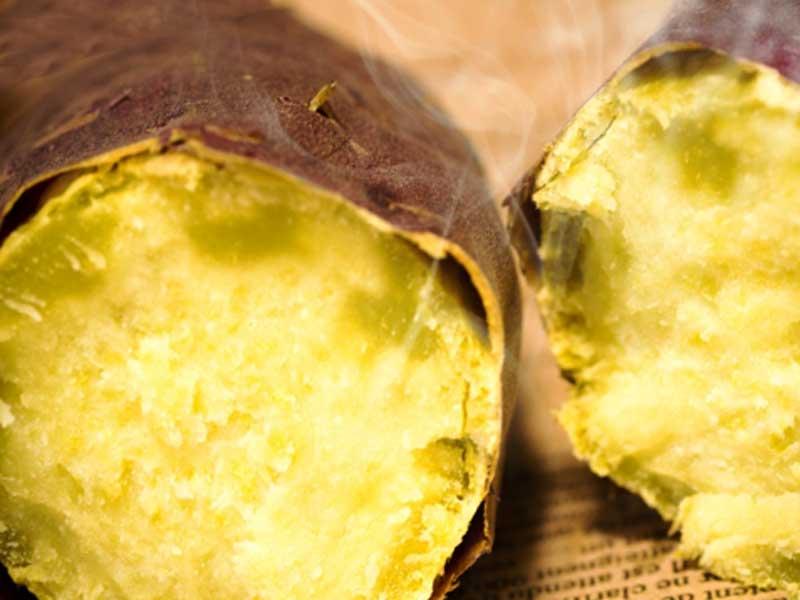 免疫力がアップするサツマイモ