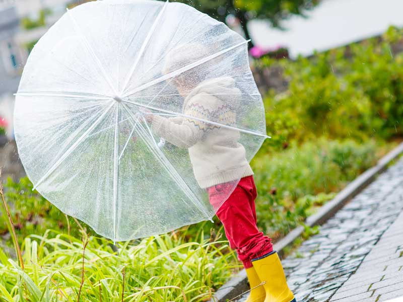 見通しのいい傘を持つ子供