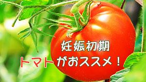 妊婦さんはトマトを食べよう~サラダ・ジュース・ミニでも
