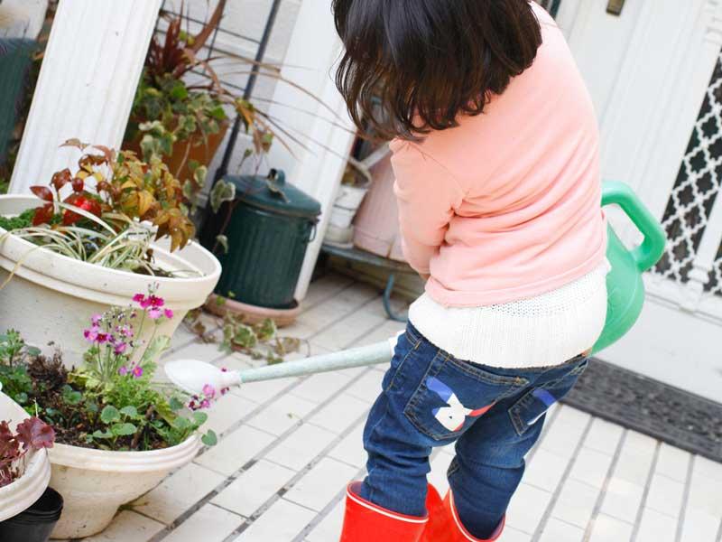 植木鉢に水やりする女の子