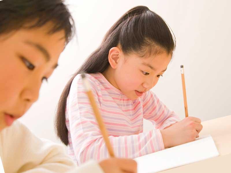 勉強をしている高学年の小学生