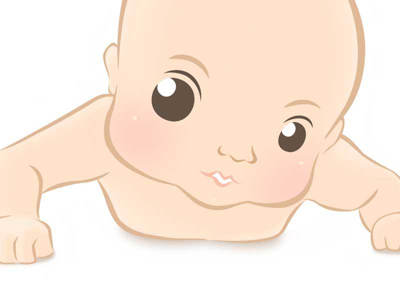 はいはいする赤ちゃんのイラスト