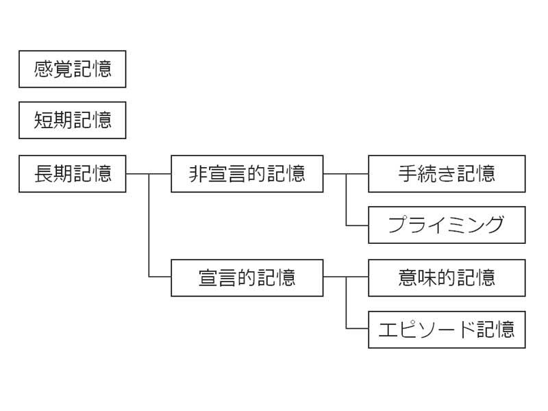 記憶分類説明表