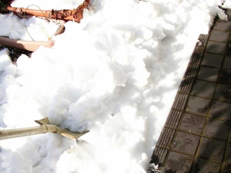 玄関の雪かき