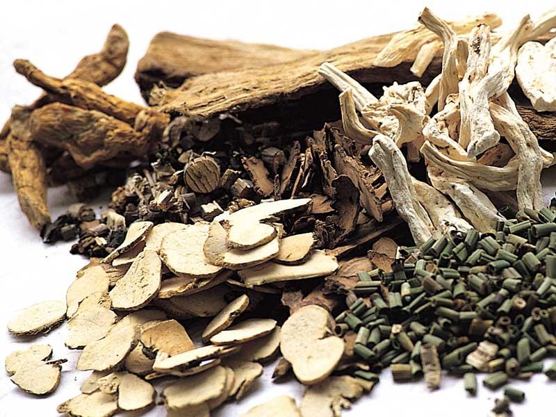 漢方薬の薬草