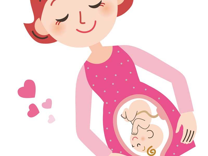 お腹の赤ちゃんを想像しているママのイラスト