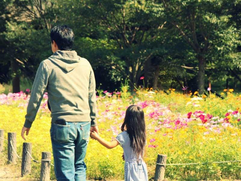 お花畑で散歩する親子