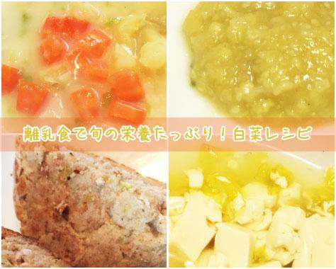 離乳食の白菜はいつから?冷凍やレンジは?段階別レシピ