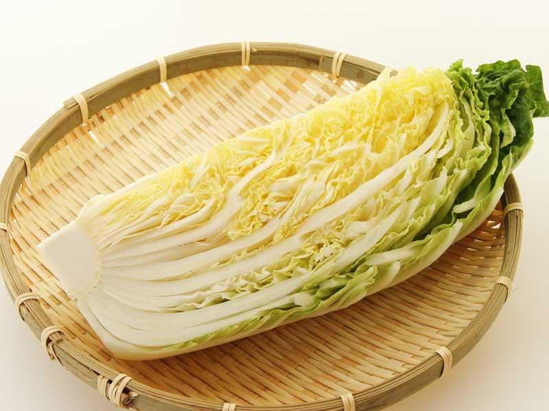 カットされた新鮮な白菜