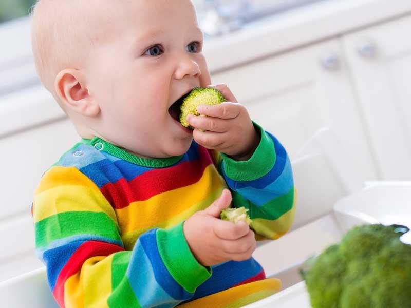 ブロッコリーを口にいれる赤ちゃん
