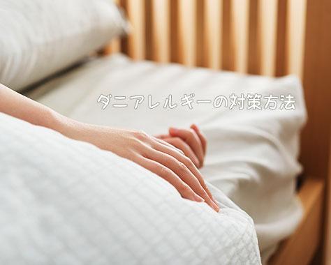 ダニアレルギーの症状・原因から分かる効果的な対策法