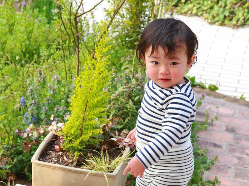 庭で遊ぶ幼児
