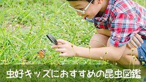 昆虫図鑑キッズに好評おすすめ15選~3Dやアプリもアリ