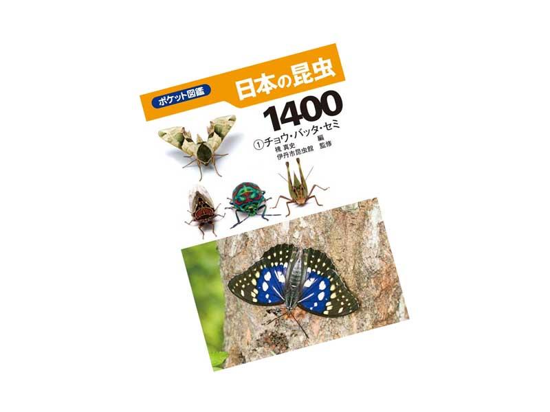 ポケット図鑑日本の昆虫1400